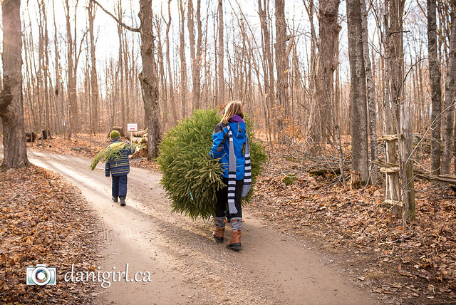 Family Christmas by Ottawa photographer Danielle Donders