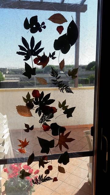 Autunno: tenda di foglie