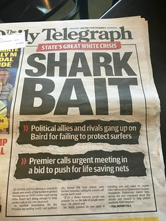 Newspaper article about shark attack