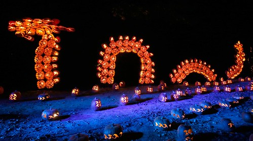 The Great Jack O'Lantern Blaze Presented by the Historic Hudson Valley (5)