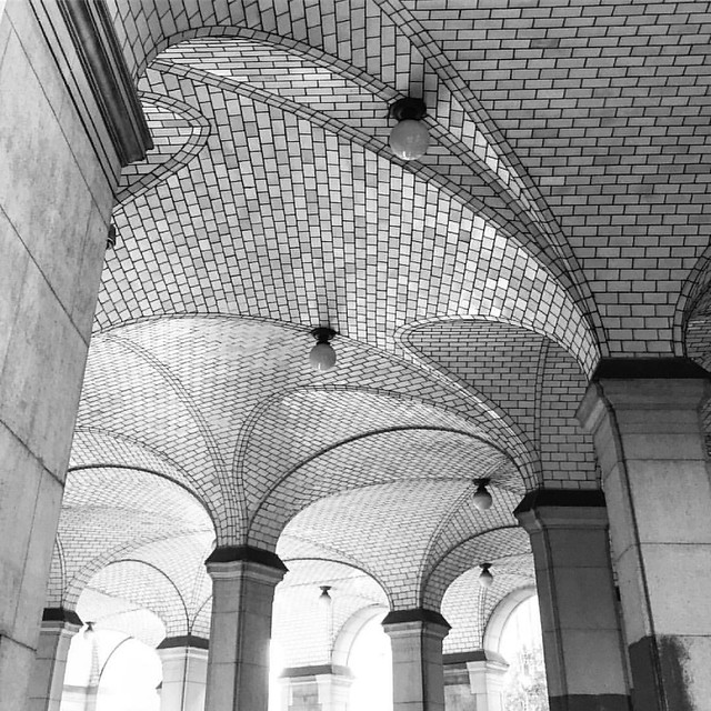 Ceiling Curves and Creative Tiling - Gustavo Tile NYC City Hall