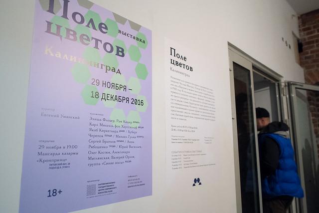 """Выставка """"Поле цветов"""". Открытие 29.11.2016"""
