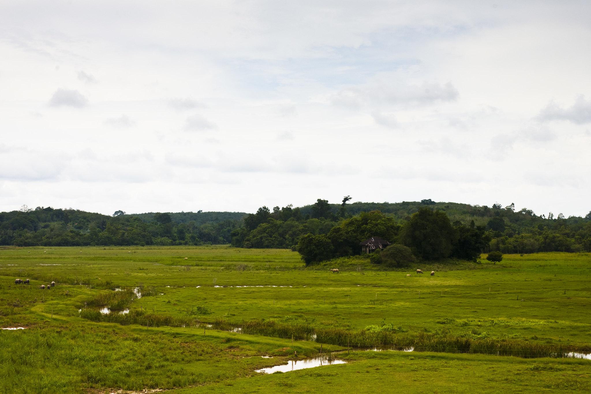 Pahang sights