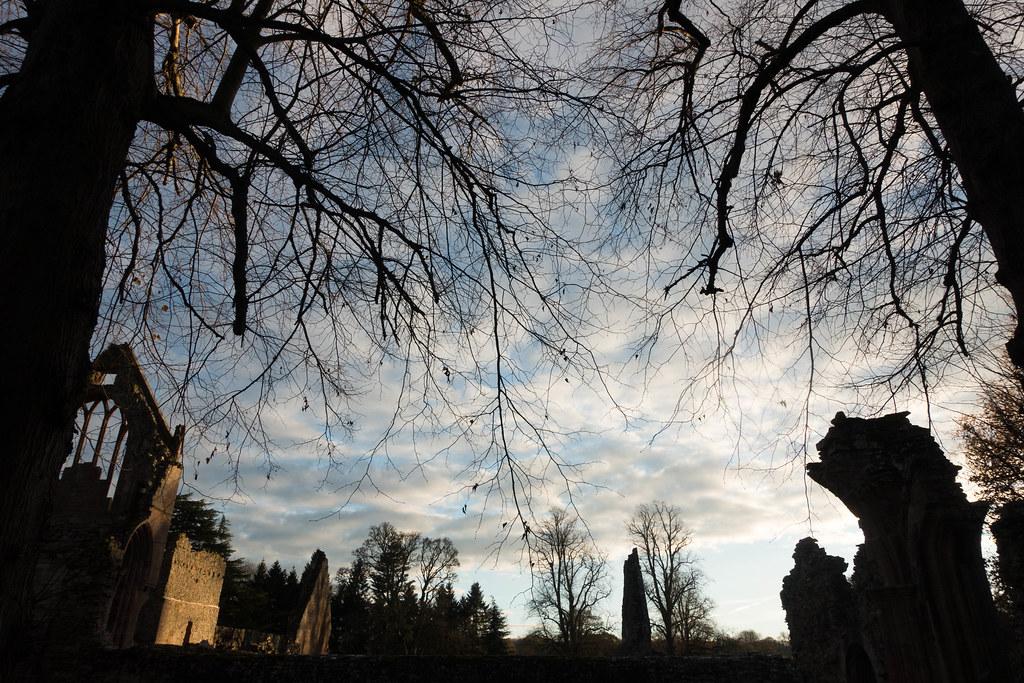 Melrose Abbey-03770