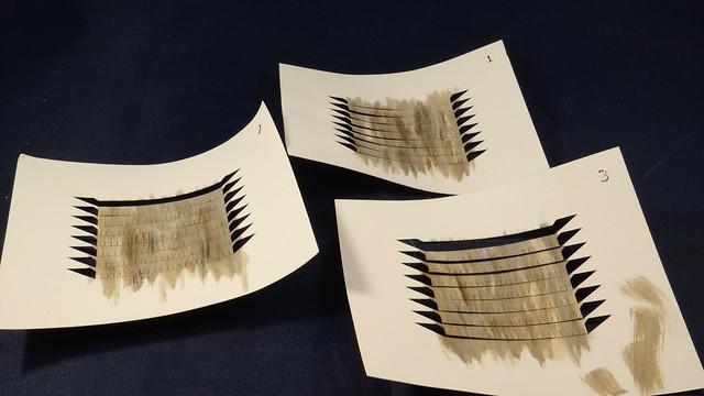 Cricut shingles