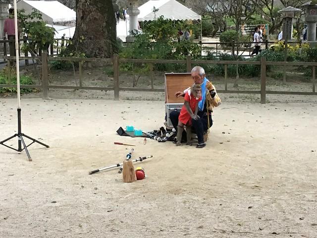 有個老爺爺帶著猴子來表演,那個紅衣讓我想到苦兒流浪記