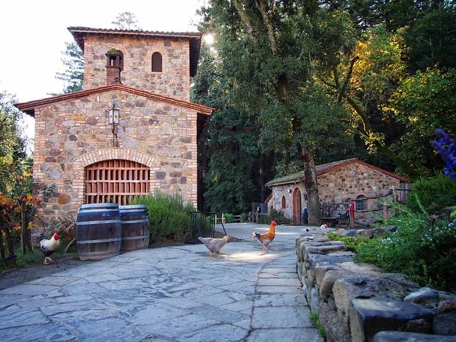 Castello Di Amorosa Chickens