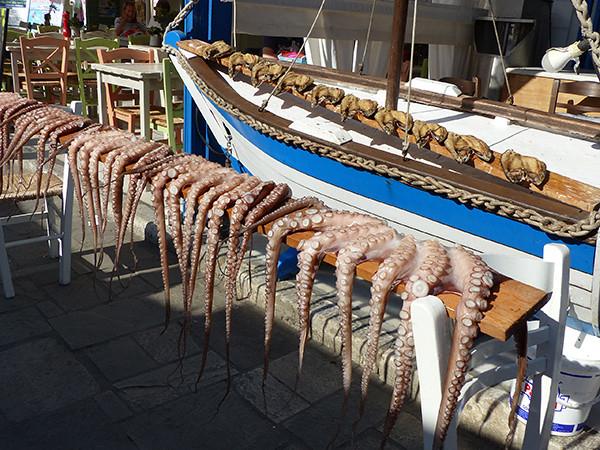 poulpes et gouna sur un bateau