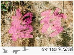 邱京山墓-03