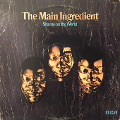THE MAIN INGREDIENT:SHAME ON THE WORLD(JACKET A)