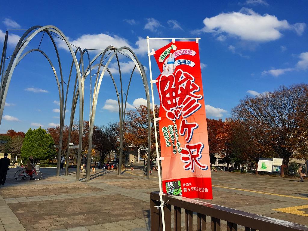 20161126_光が丘 (4)