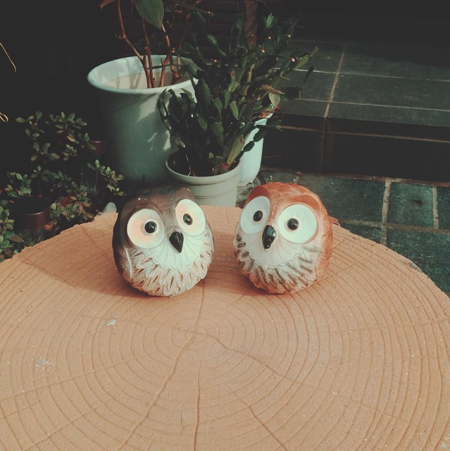 Miniature owl figurines