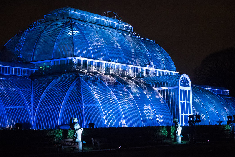 Kew Gardens Christmas Illuminations
