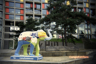 Park Hill Elephant (Congratulations)
