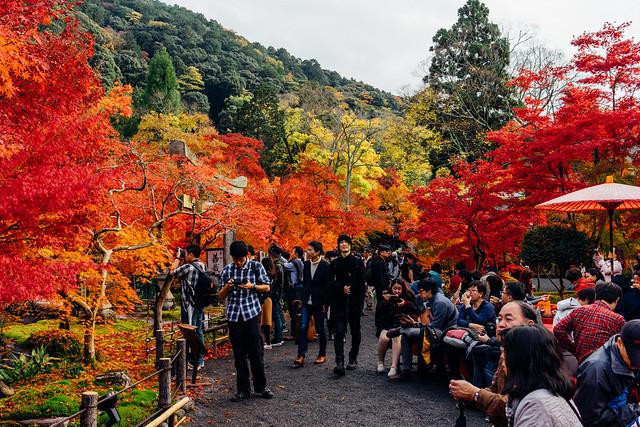 Kyoto_Eikando_07