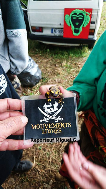 Ninjatek free party Mouvements Libres