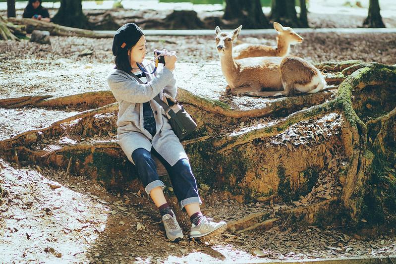 Kasugataisha 春日大社|奈良 Nara