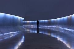 Museu Niemeyer - Curitiba - Brasil by Gerson Gomes Martins