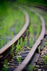 Rails & Weeds
