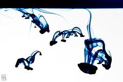 Blue Spirits by Ismael G.G.