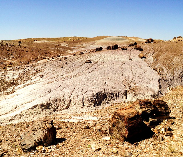 Petrified Forest National Park (6)