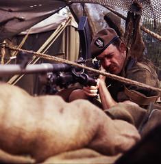 Wimpole at War