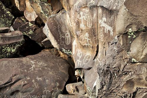 Petroglyph Cove