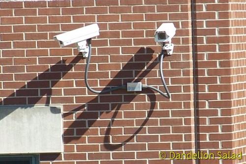 Domestic Spying