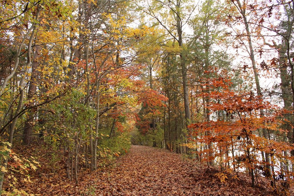 Robinwood Lake Fishing Robinwood Lake Flickr