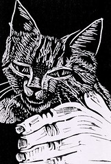 2011.11.07 Pepe Farrés Sanchez & Kitten by Julia L. Kay