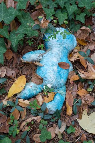 Lone toy bear