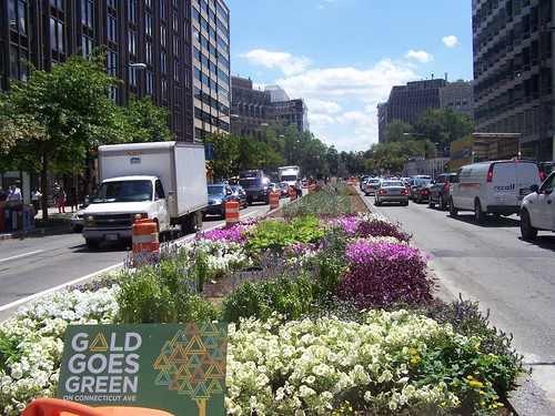New planted street median, Connecticut Avenue, between K and L Streets