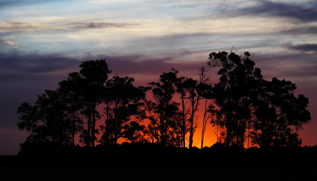 Sunset in Manjimup
