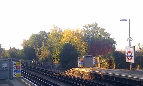 Autumnal morning at Woodside Park station