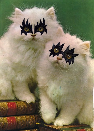 KISS Kittens | by ☾ mona p.