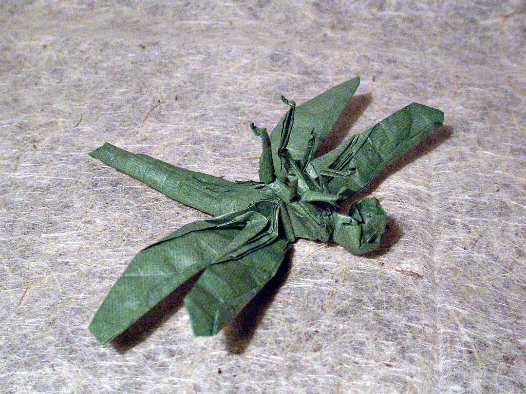 Satoshi Kamiya Dragonfly Dragonfly 1,1b by Kamiya