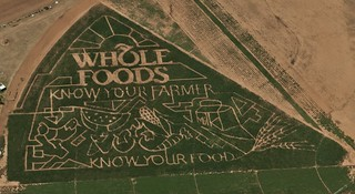 Whole Foods Corn Maze | by Si1very
