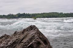 View of Niagara Falls Rapids by Randi Deuro