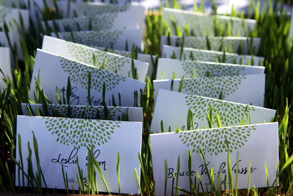 Dinner placecards by Devilish Wahoo
