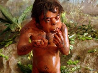 Java Man Kid - Sangiran