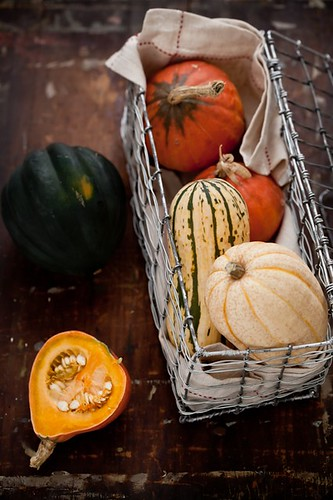 Autumn Squash Cooking | by tartelette