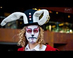 European Mad Rabbit by Xvant