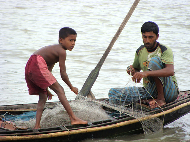 Freshwater shrimps, Barisal, Bangladesh. Photo by Siew Sau Yeng, 2010