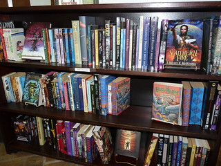 [Blue Train Books, 'Teen and Young Adult Fiction', CC Licence: CC BY-NC-SA 2.0(https://creativecommons.org/licenses/by-nc-nd/2.0), Image source: flickr (https://www.flickr.com/photos/blue-train-books/6390213393)]