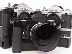 Nikon F2 by Narsuitus
