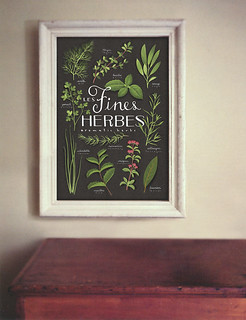 Les fines herbes - Aromatic herbs | by Evajuliet Atelier
