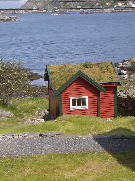 Comenius - Norway