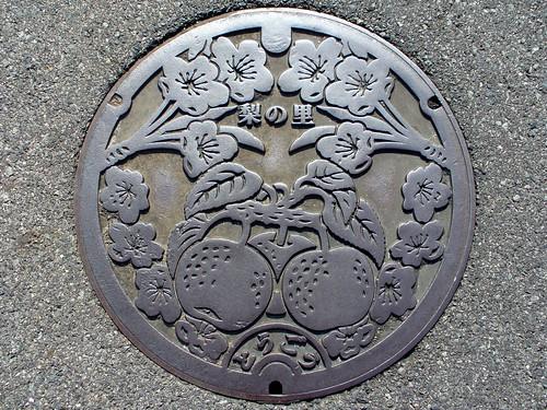 Togo Tottori, manhole cover (鳥取県東郷町のマンホール)