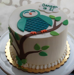 Owly Birthday Cake | by Whipped Bakeshop