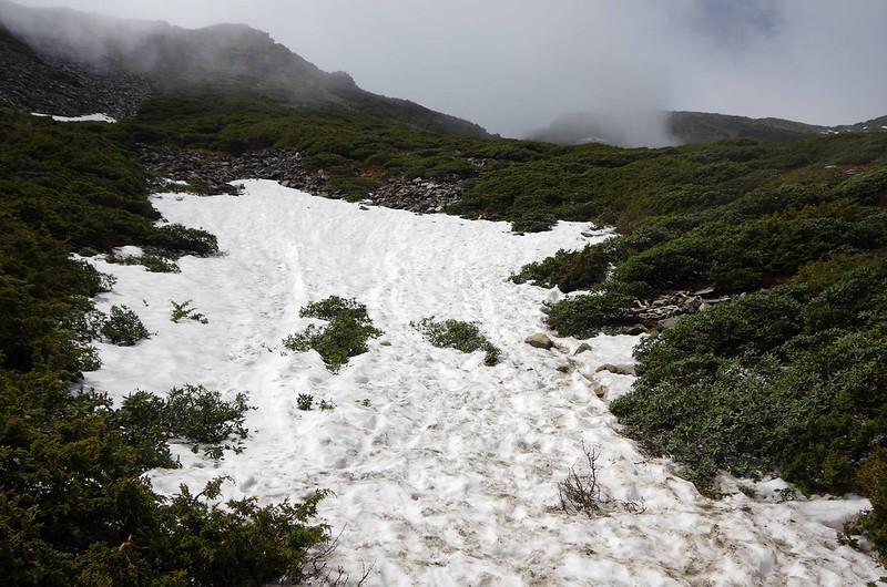 20160502台湾雪山0838